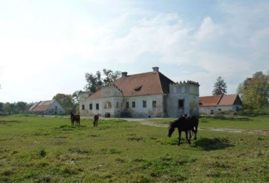 Castelul Nemes